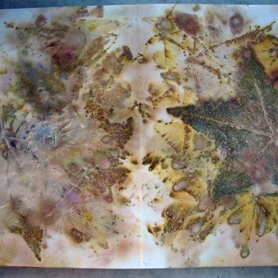 Εικονες από τη συλλογη μου:βαφοντας με υλικα της φυσης σε χαρτι και υφασμα